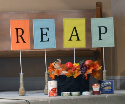 REAP sanctuary display